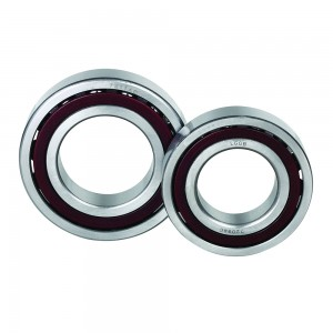 Manufacturer for Needle Roller Bearings - Angular Contact Ball Bearing – LGGB