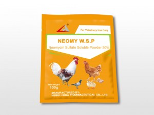 Hot New Products Tilmicosin Soluble Powder - Neomycin Sulphate Soluble Powder 20% – Lihua