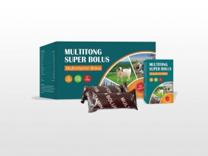 Multivitamin Bolus
