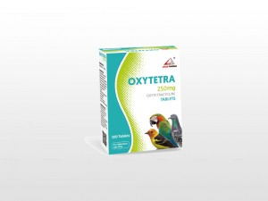 New Arrival China Oxytetracycline Bolus Uses - Albendazole Bolus 250mg – Lihua