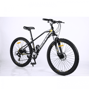 factory mountain bicycle 21 speed custom High quality mens suspension mountain bike mtb bike