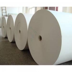 Raw Material for Paper Cups