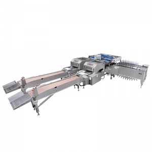 OEM Manufacturer Egg Cooking Shelling Machine - EGG PACKAGING MACHINE – Min-Tai