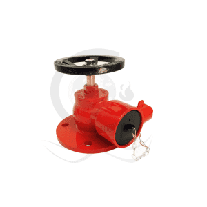 Flange right angle landing valve