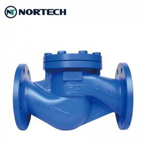 2020 China New Design Non-Return Valve - Lift Check Valve – Nortech