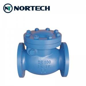 High reputation Swing Check Valve 2500lbs - Cast Iron Swing Check Valve – Nortech