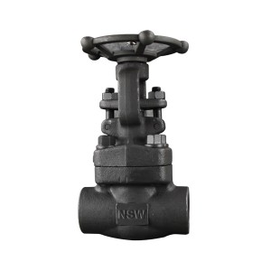 Api 600 Valve - Bolted bonnet Forged Gate Valve – Newsway