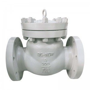 Dual Palte Check Vlave - BS 1868 Swing Check Valve – Newsway