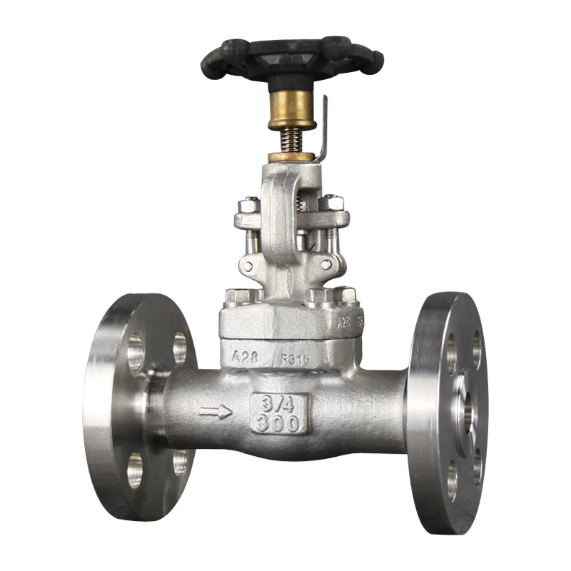F304 Flange Gate Valve Featured Image