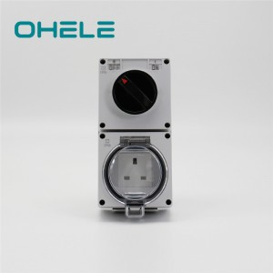 Pipe Nipple Types Industrial Sockets And Switches - 1 Gang Switch + 1 Gang UK Socket – Ohom