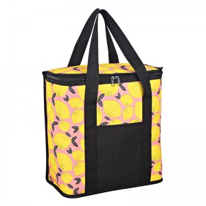 Polyester double handle Picnic cooler bag