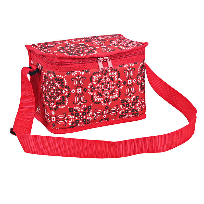 Wholesale Outdoor Cooler Bag - Polyester fabric 6 can cooler bag with fashion spring summer pattern design – Picvalue