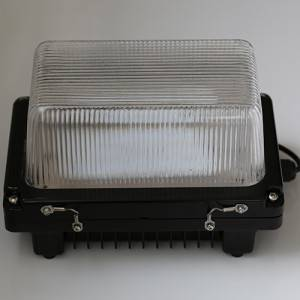 Bulkhead / EM Bulkhead LED Light
