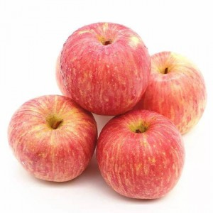Rapid Delivery for Fresh Apple Cake With Cake Mix - Export 2020 new crop fresh apple fruit with good price – AGR