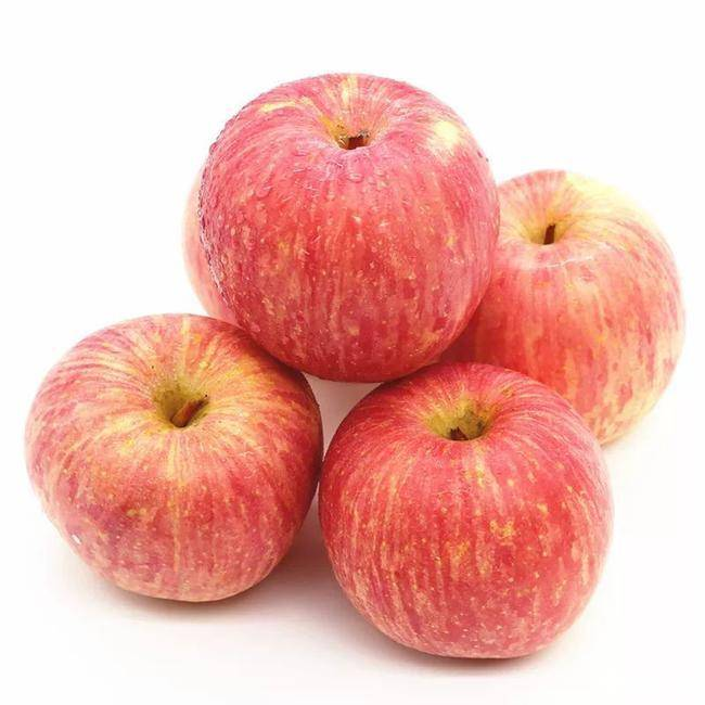 Hot sale Growing Gala Apples - Export 2020 new crop fresh apple fruit with good price – AGR