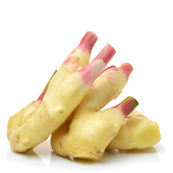 Fixed Competitive Price Fresh Yellow Ginger - export wholesale fresh vegetables ginger and garlic for sale – AGR
