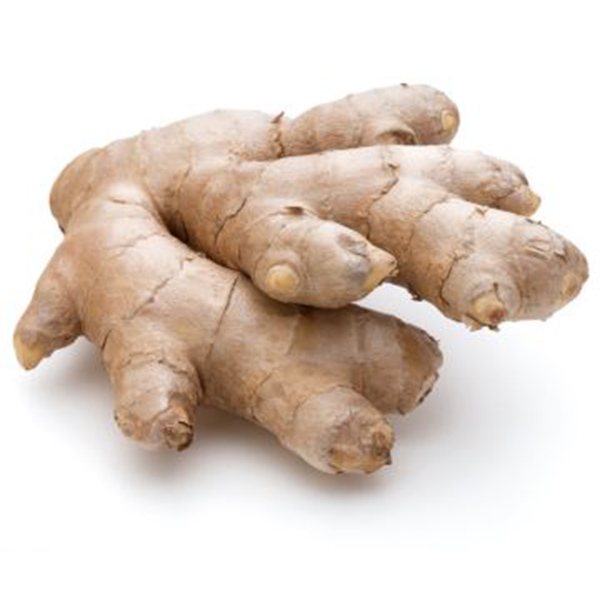 Chinese Professional Ground Ginger To Fresh - Good price china wholesale new crop fresh ginger   – AGR