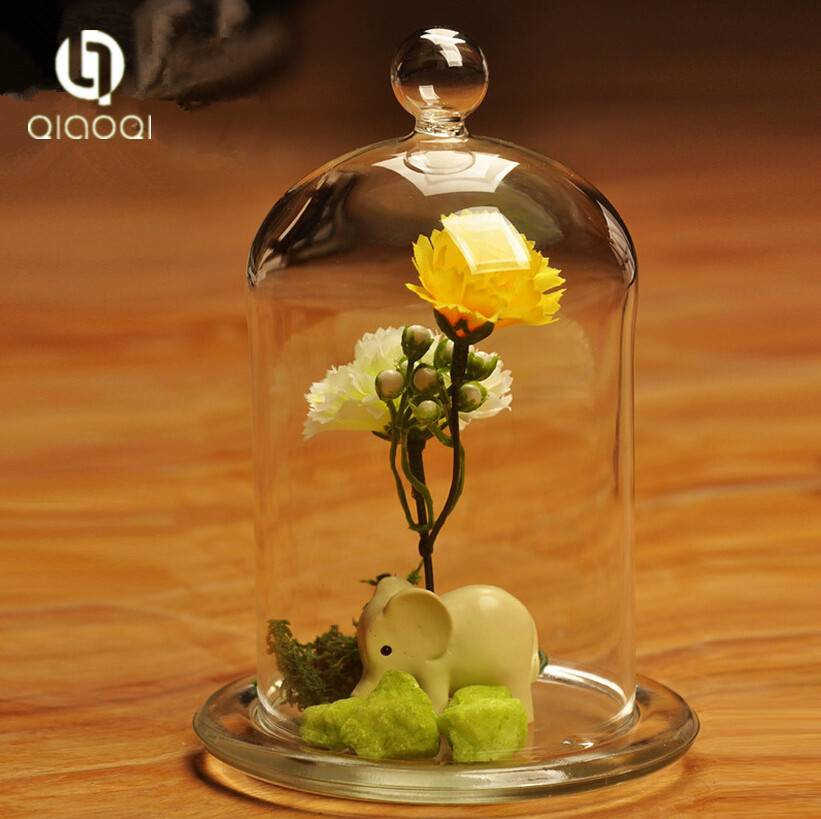 Borosilicate round glass bell cover / glass bell dome