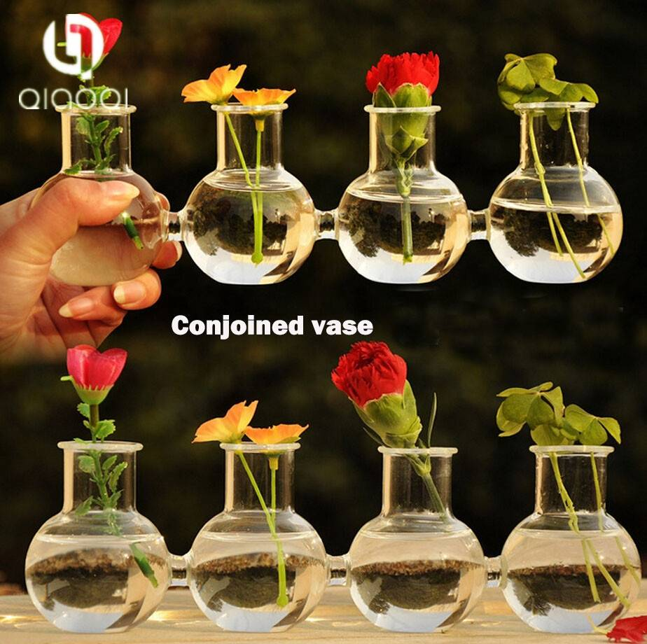 Creative water planting clear glass vase
