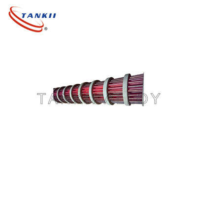 2020 China New Design Radiant Tube Bayonets - Bayonet Heating Elements – TANKII