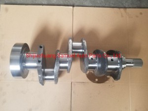 Engine Casting Crankshaft suitable for Perkins 4.203  with factory price