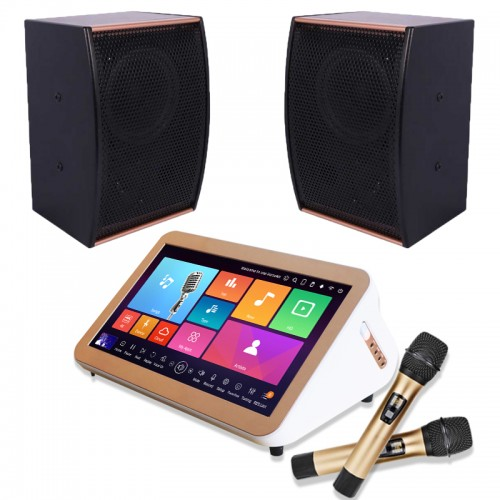 "All-in-one karaoke jukebox 15.6"" built-in amplifier with uhf wireless microphone and speaker"
