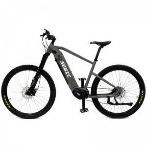 Manufacturer of Best Folding Ebike - SEBIC enduro mid mounted motor road ebikes – Funncycle