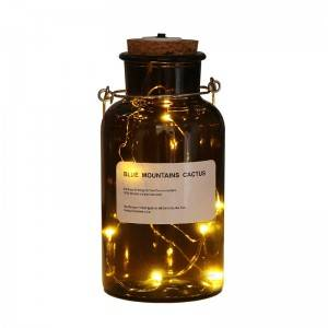 PriceList for Glass Cultivation Bottles -  Reagent Bottle Decoration Glass Lights – Sogood