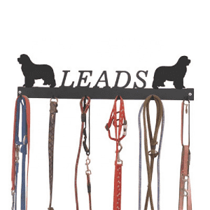 Metal key Rack & Dog Leash Hanger