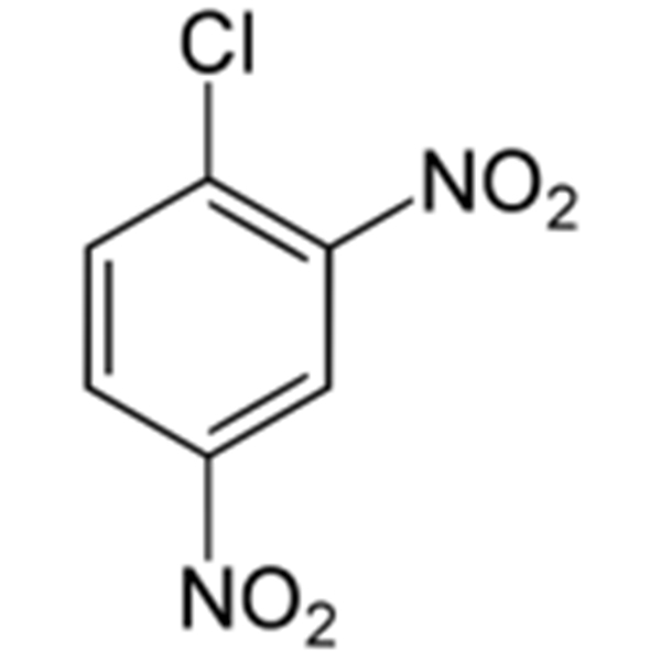 2,4-Dinitrochlorobenzene Featured Image