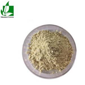 Wholesale Price Professional Supplier in China,Cas:520-36-5 Saw Palmetto Powder Extract