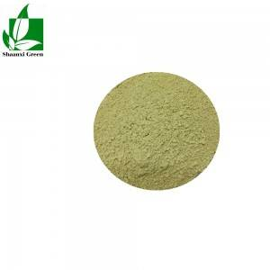 High Quality Apigenin 98% - Baicalin – Shaanxi Green Bio-Engineering