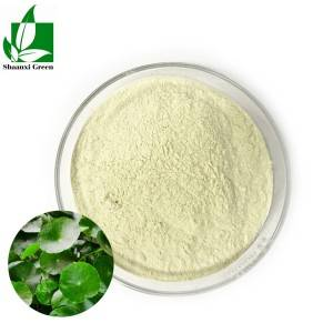 Centella Asiatica extract 40%
