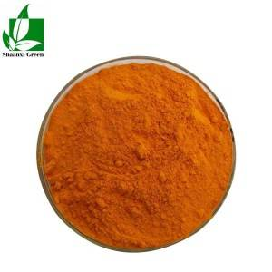 High definition Rutin 98% - Curcumin Powder Extract Curcumin 98% – Shaanxi Green Bio-Engineering