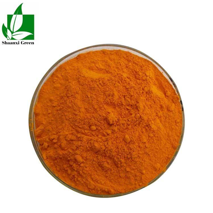 Curcumin Powder Extract Curcumin 98% Featured Image