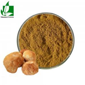 High definition Icariin Powder 98% - Lions Mane Hericium Erinaceus Extract Polysaccharides Powder – Shaanxi Green Bio-Engineering