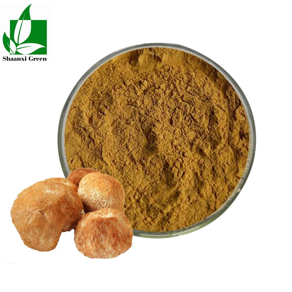 Cheap PriceList for Sophora Japonica Extract Luteolin 98% - Lions Mane Hericium Erinaceus Extract Polysaccharides Powder – Shaanxi Green Bio-Engineering Featured Image