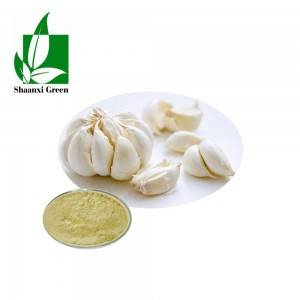 China Cheap price Baicalin Powder - 100% Nature Garlic Extract Allicin Powder 1% CAS No.:539-86-6  – Shaanxi Green Bio-Engineering