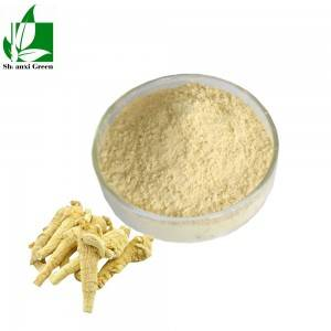 Factory wholesale 80% Icariin Powder - 100% Natural Siberian Ginseng Extract plant extract powder p.e. – Shaanxi Green Bio-Engineering