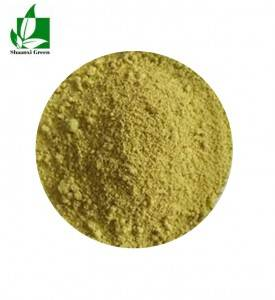 Factory wholesale Luteolin Powder - Sophora Japonica Extract Kaempferol 90% powder – Shaanxi Green Bio-Engineering