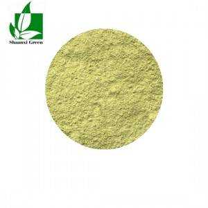 Factory Supply Rutin Extract Powder - Luteolin – Shaanxi Green Bio-Engineering