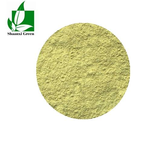 Good Quality Herbal Extract Powder - Luteolin – Shaanxi Green Bio-Engineering
