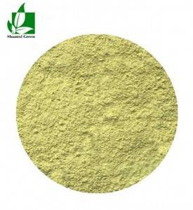 Good Wholesale Vendors Rhodiola Rosea Extract Powder - Luteolin 90% sigma 98% sigma – Shaanxi Green Bio-Engineering