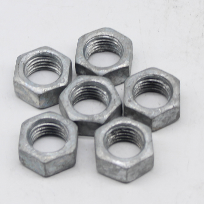 Good Quality Galvanize Nut - The hot-dip galvanized nut – Tailian