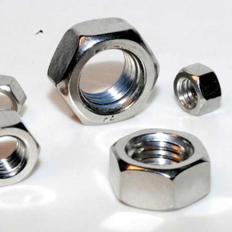 China OEM Hexagon Bolt And Nut Where To Buy - Stainless steel hex nuts  – Tailian detail pictures