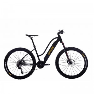 700C ELECTRIC BEACH BIKE CHEAP E BIKE