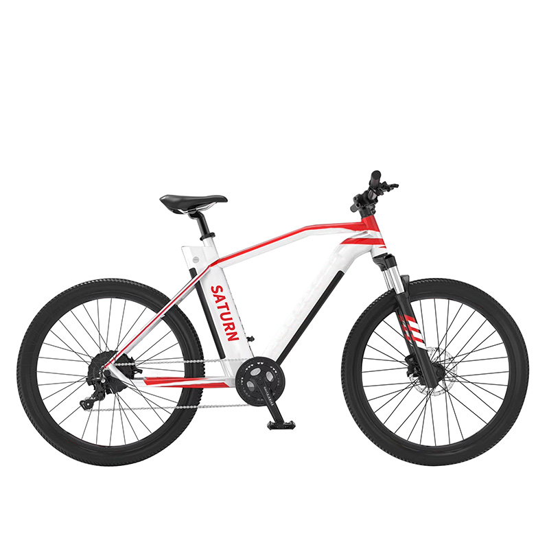 36V 250W REAR MOTOR 29INCH HIGH QUALITY MTB E BIKE Featured Image