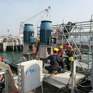 China Gold Supplier for Condensation Pump - VTP Vertical Turbine Long Shaft Sea Water Pump – Tongke
