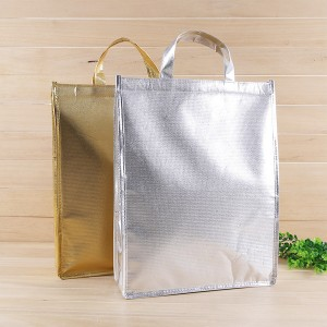 Laser Eco PP Non Woven Fresh Fruit Foodie Gourmets Cooler Bag