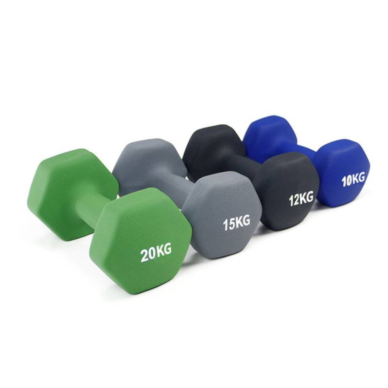 Fixed Competitive Price Interchangeable Dumbbell Set - Colorful Vinyl Neoprene Coated Dumbbell Weight Lifting Rubber Dumbbell – Toptons